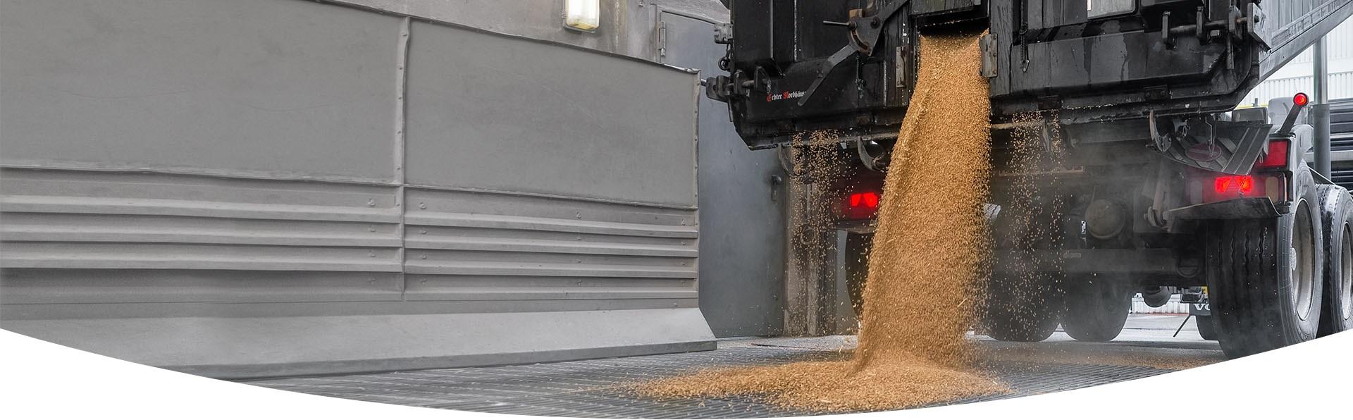 LKW-Anhänger aus dem gerade Weizen in eine Getreidegosse läuft.